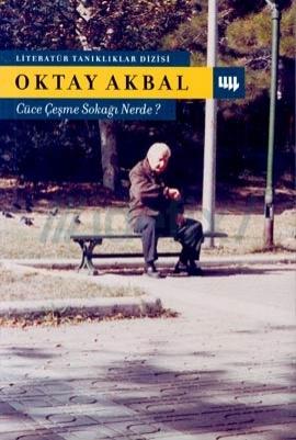 cuce-cesme-sokagi-nerede-oktay-akbal