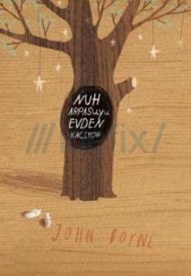 Nuh Arpasuyu Evden Kaciyor John Boyne
